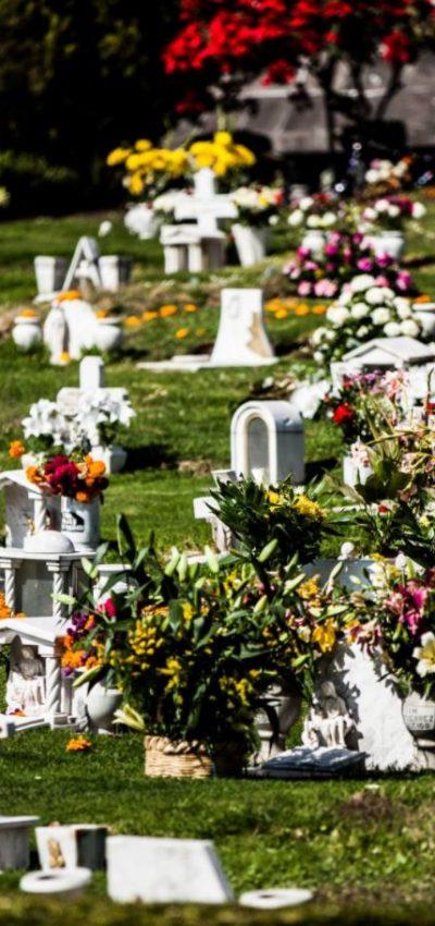 10 poemas sobre la vida y la muerte