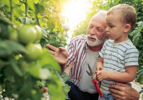 El sabio arte de saber envejecer